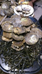1. Oysters