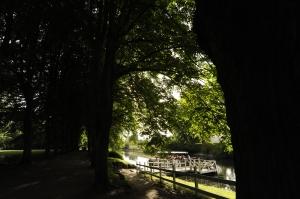 The Park (3)
