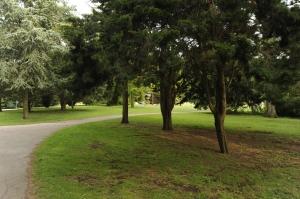 The Park (5)